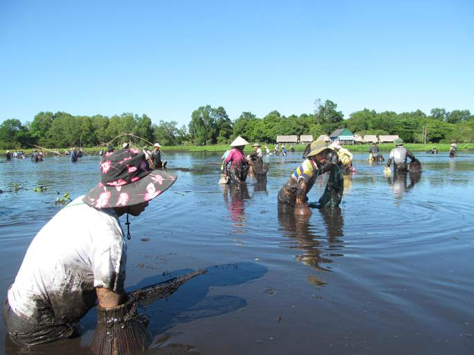 Độc đáo lễ hội phá trằm bắt cá, huyên náo cả vùng đầm nước - Ảnh 7.