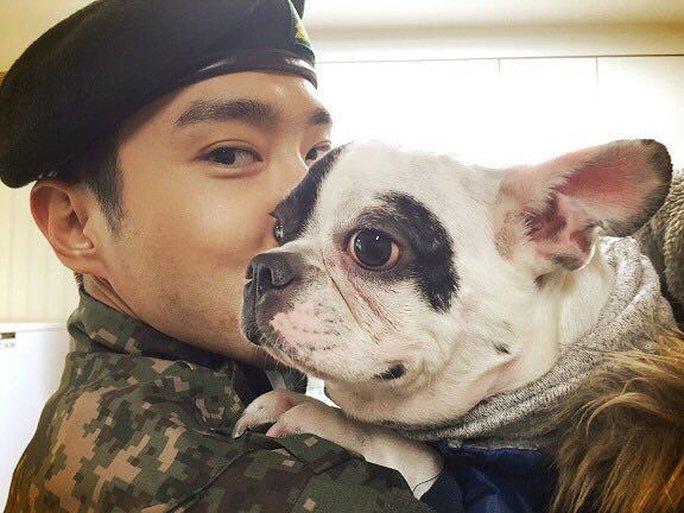 Sao Hàn bị tẩy chay vì chó cưng cắn chết người - Ảnh 3.