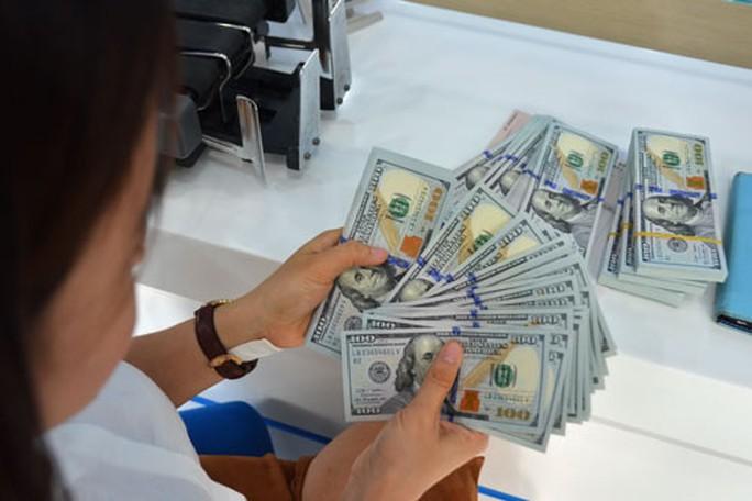 Hạn mức vay thương mại nước ngoài của các doanh nghiệp và tổ chức tín dụng sẽ theo hình thức tự vay, tự trả Ảnh: Tấn Thạnh