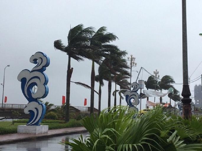 Bão số 4 đổ bộ vào Quảng Bình gây mưa lớn, nhiều nơi bị ngập - Ảnh 1.