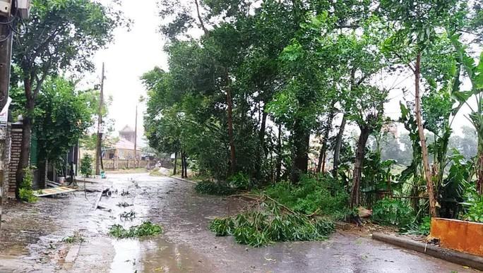 Bão số 4 đổ bộ vào Quảng Bình gây mưa lớn, nhiều nơi bị ngập - Ảnh 4.