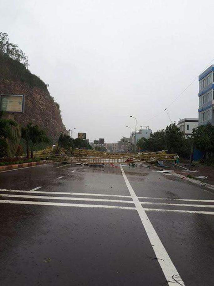Từ Bình Định đến Đà Nẵng: Cây ngã la liệt, nhiều khu vực bị lũ chia cắt - Ảnh 4.