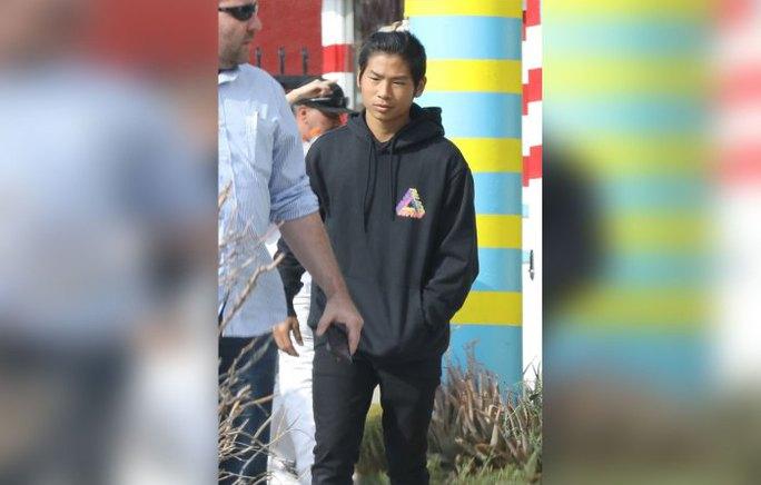 Pax Thiên và Brad Pitt đi trị liệu tâm lý - Ảnh 3.