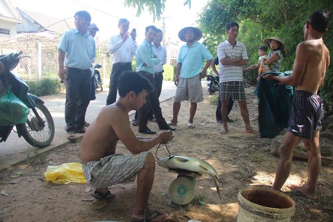 Cá nuôi trên sông Bồ chết hàng loạt, người dân trắng tay - Ảnh 2.