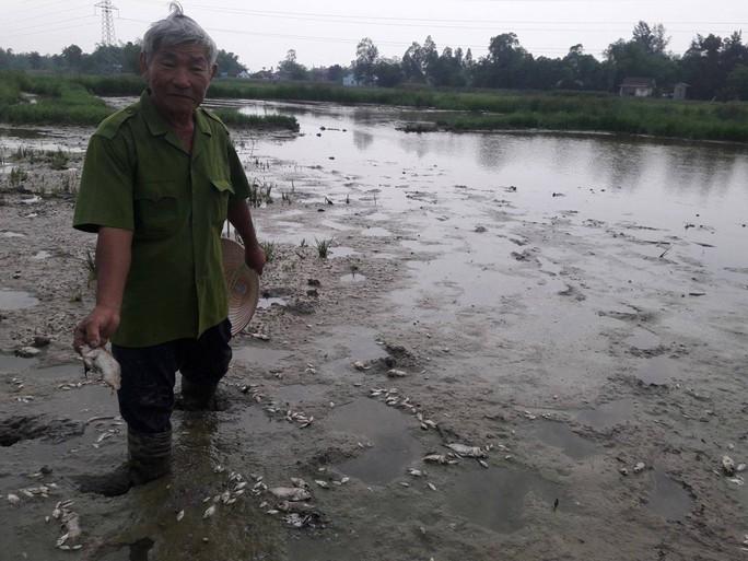 Cá chết tại bàu Lệ Sơn được xác định là do nước thải của nhà máy kẽm thuộc Công ty TNHH T.Đ.T gây ra