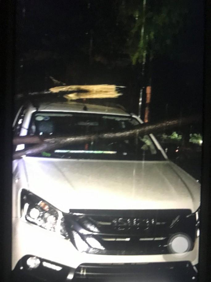 Bão số 14 gây mưa to gió lớn ở TP HCM - Ảnh 14.