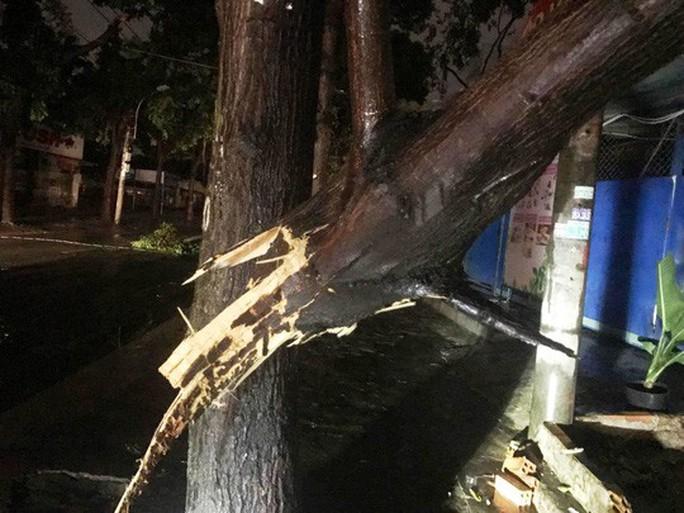 Bão số 14 gây mưa to gió lớn ở TP HCM - Ảnh 15.