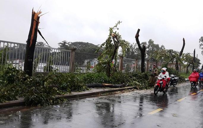 Ảnh hưởng bão số 14, nhiều nơi ở TP HCM thiệt hại nặng - Ảnh 2.