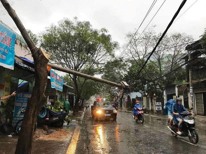 Ảnh hưởng bão số 14, nhiều nơi ở TP HCM thiệt hại nặng - Ảnh 9.