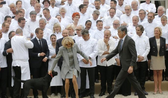 Chó cưng của tổng thống Pháp làm 3 quốc vụ khanh bó tay - Ảnh 4.