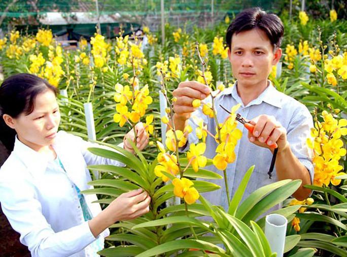 Đào tạo nhân lực nông nghiệp công nghệ cao - Ảnh 1.
