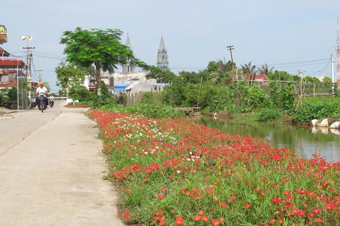 Ngỡ ngàng những con đường hoa rực rỡ làng quê miền Bắc - Ảnh 9.