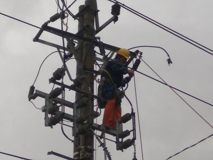 """Nỗ lực """"giải cứu"""" 2.600 trụ điện trung thế bị bão quật ngã ở Quảng Bình - Ảnh 1."""