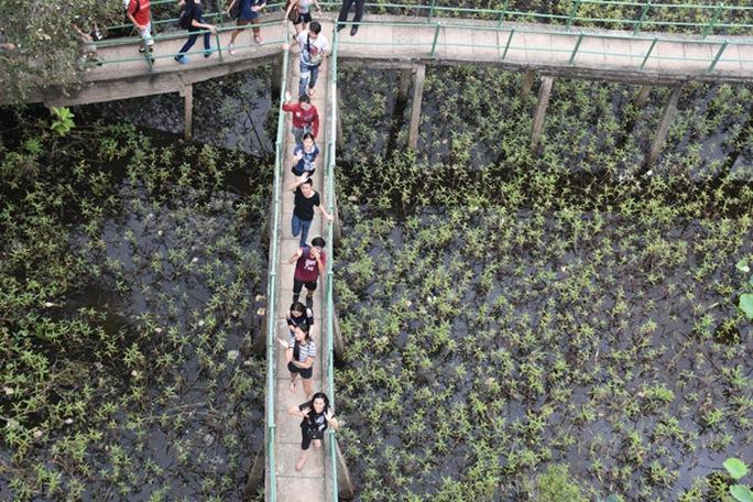 100 bạn trẻ Việt kiều về Đồng bằng sông Cửu Long dự trại hè - Ảnh 10.