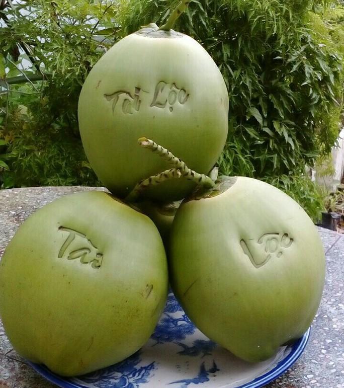 Trái cây độc, lạ sẵn sàng đón Tết - Ảnh 8.