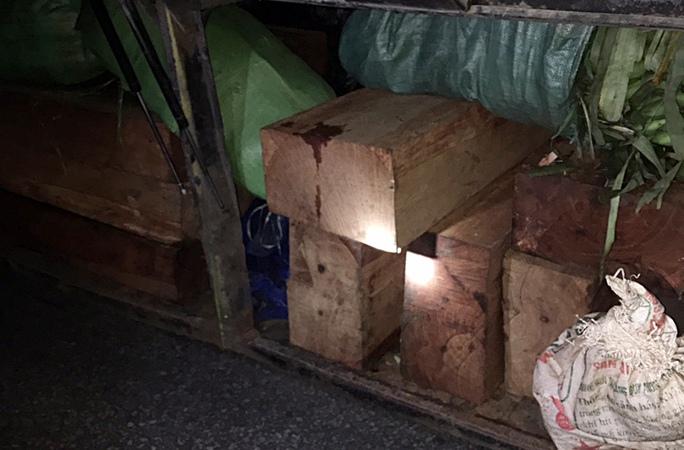 Bị phát hiện chở gỗ lậu, đòi chung chi CSGT 10 triệu đồng - Ảnh 1.