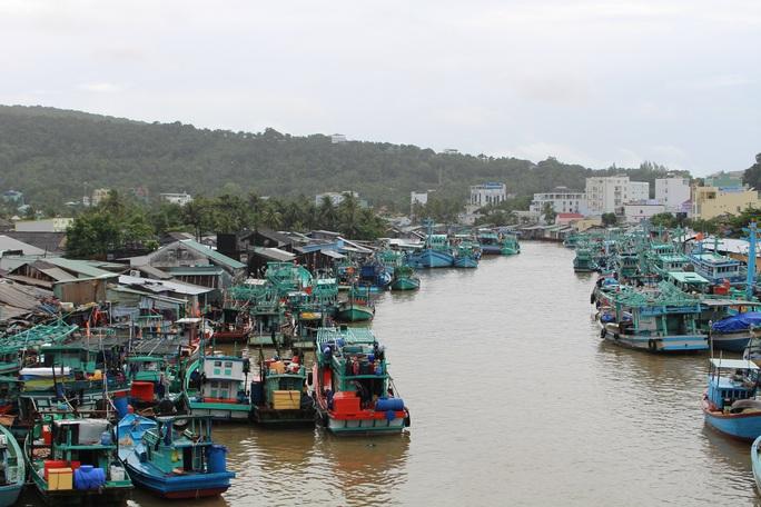 Diễn biến mới nhất vụ sai phạm trong quản lý đất đai ở Phú Quốc - Ảnh 5.