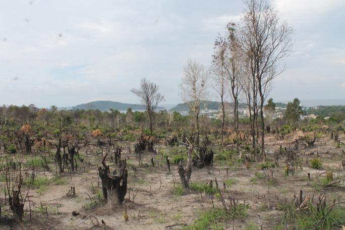 Diễn biến mới nhất vụ sai phạm trong quản lý đất đai ở Phú Quốc - Ảnh 3.