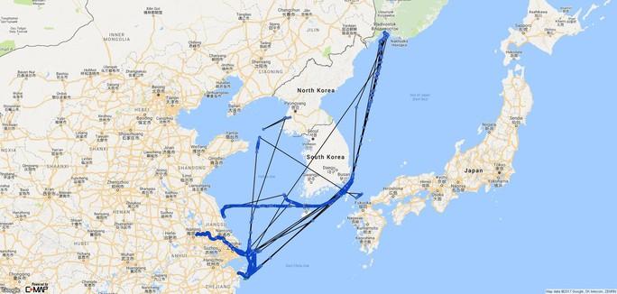 Bí ẩn con tàu Triều Tiên bị LHQ trừng phạt rồi chạy vòng tròn - Ảnh 3.