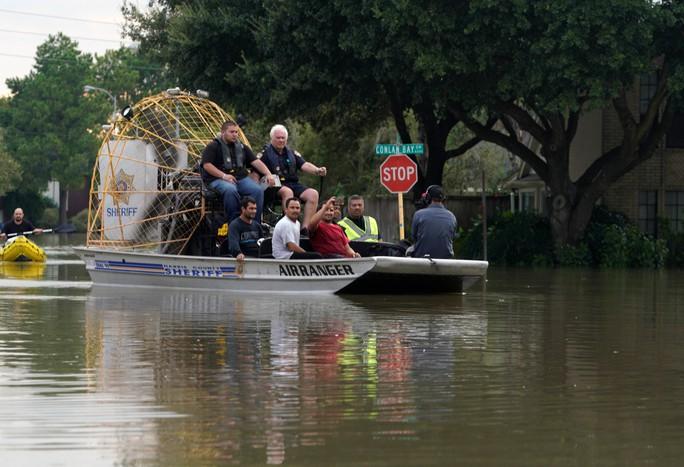 Bão Harvey làm hại môi trường Texas - Ảnh 1.