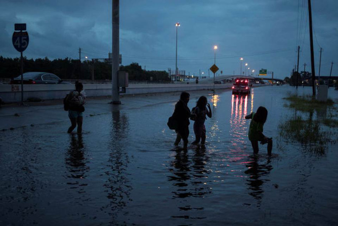 Hình ảnh người Việt trong mưa bão Harvey - Ảnh 2.