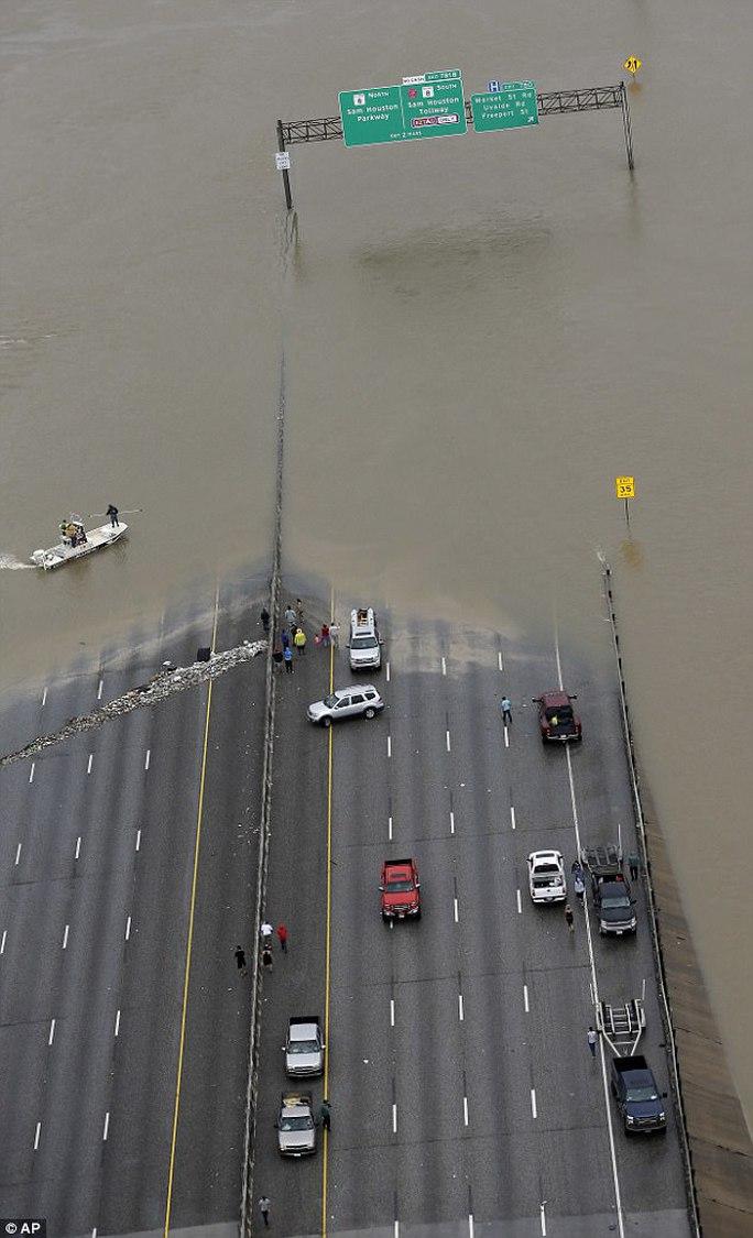 """Mỹ: """"Đảo kiến lửa"""" xuất hiện trong bão Harvey - Ảnh 9."""