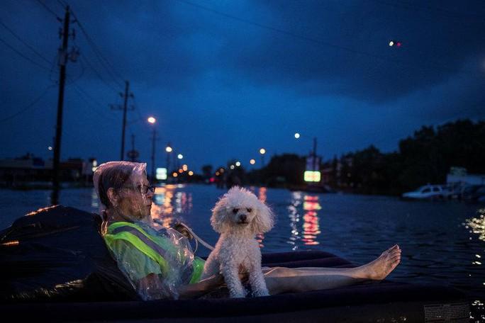 Mỹ: Bức ảnh gây sốc trong bão Harvey - Ảnh 2.