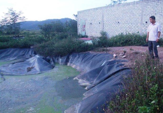 Đi chăn bò, bé gái 9 tuổi rơi xuống hồ biogas tử vong - Ảnh 1.