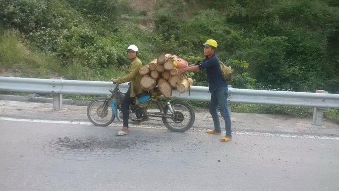 Một xe chở gỗ tại khu vực đèo Tô Na