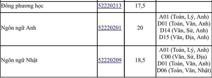 Thêm nhiều trường ĐH tại TP HCM công bố điểm chuẩn - Ảnh 5.