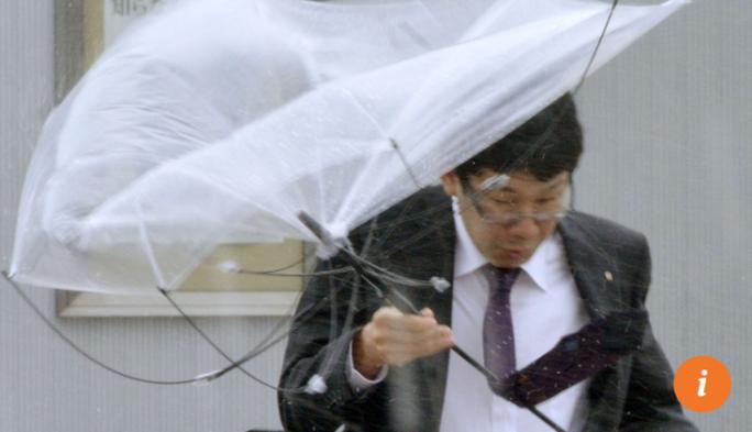 Bão Lan quần thảo Nhật Bản, hơn 130 người thương vong - Ảnh 8.