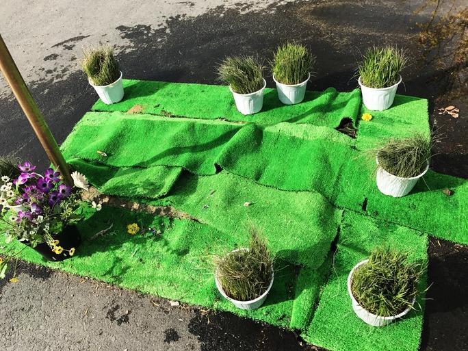 Một trong những tiểu cảnh thể hiện thông điệp Hoa vàng trên cỏ xanh.