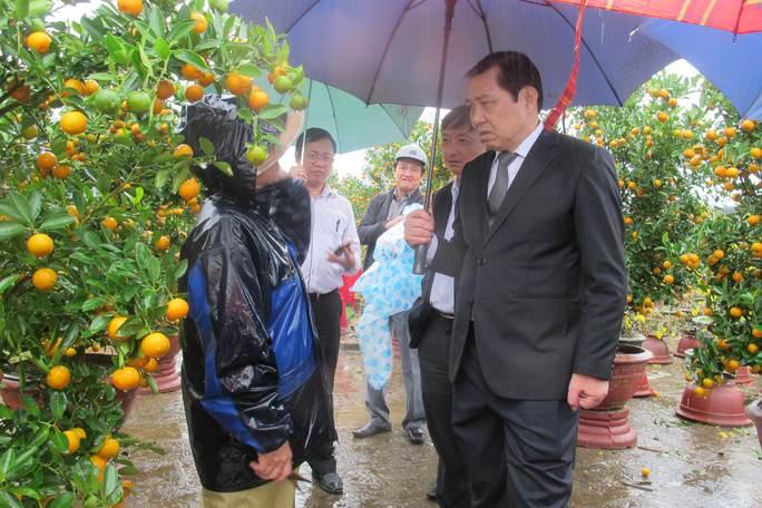 Ông Thơ động viên các hộ bán quất tại chợ hoa Tết và cho biết sẽ có hỗ trợ người dân