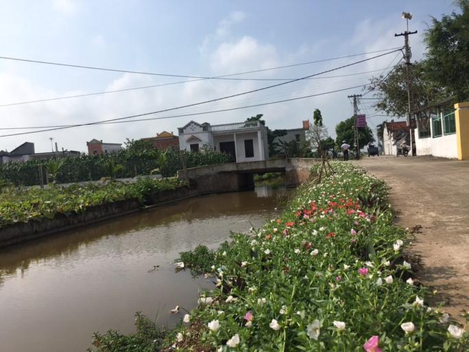 Ngỡ ngàng những con đường hoa rực rỡ làng quê miền Bắc - Ảnh 6.