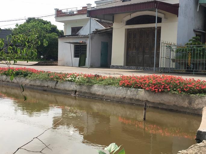 Ngỡ ngàng những con đường hoa rực rỡ làng quê miền Bắc - Ảnh 23.
