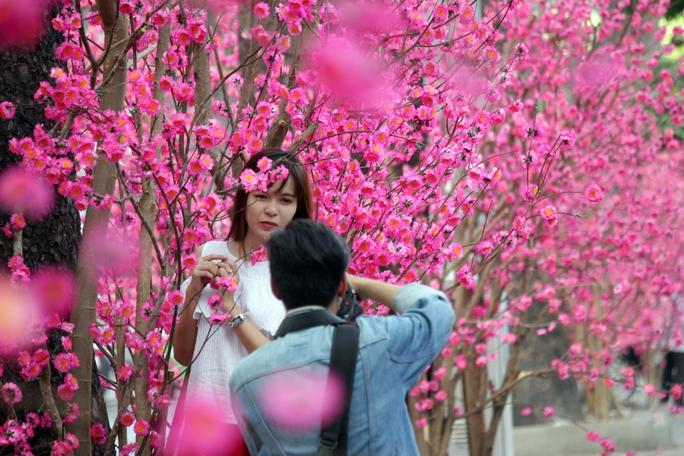 Những cây hoa đào rực rỡ trên đường Nguyễn Thị Minh khai cũng thu hút cả trăm bạn trẻ tụ tập chụp hình.