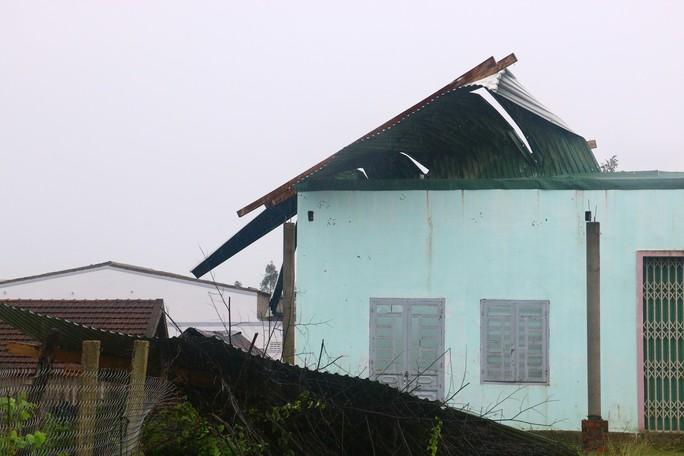 Cận cảnh Tây Nguyên tan hoang sau bão số 12 - Ảnh 4.