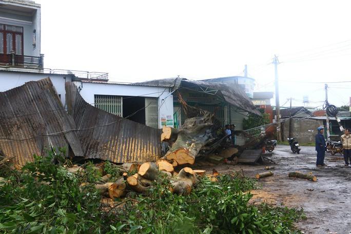 Cận cảnh Tây Nguyên tan hoang sau bão số 12 - Ảnh 13.
