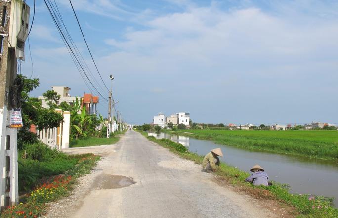 Ngỡ ngàng những con đường hoa rực rỡ làng quê miền Bắc - Ảnh 34.