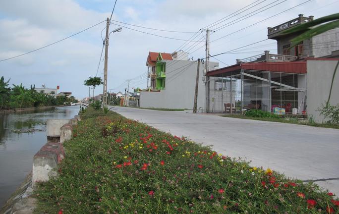 Ngỡ ngàng những con đường hoa rực rỡ làng quê miền Bắc - Ảnh 15.