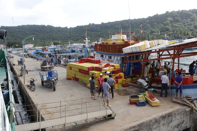 Cảng cá Thổ Chu là nơi tấp nập thuyền bè qua lại, các ghe lớn cập để lấy cá và mang về Phú Quốc hoặc các tỉnh khác để bán; một số cá ngư dân đánh bắt và chế biến ngay tại đảo rồi mới đưa về đất liền.