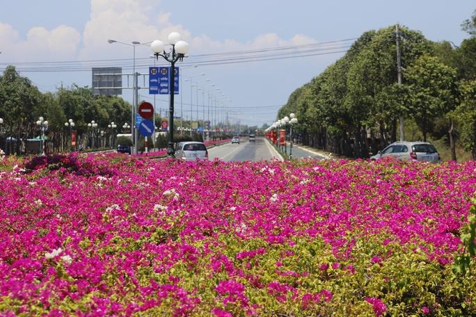 Chính sự xen kẽ ấy đã tạo nên một con đường đẹp mang đậm nét đặc trưng của thành phố, hút hồn du khách khắp nơi.