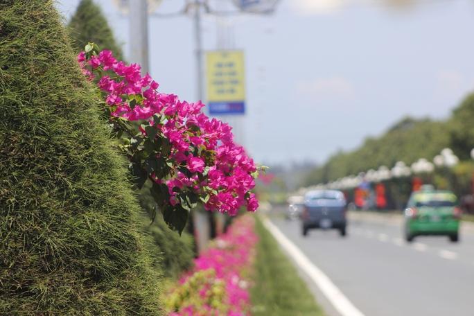 Để con đường có được những vẻ đẹp trên, phải kể đến sự cần mẫn, chăm chỉ của những công nhân áo xanh đã ngày đêm chăm sóc. Nhất là vào những ngày hè oi ả, việc cắt tỉa cây, chăm bón từng bông hoa được các công nhân cẩn thận hơn.
