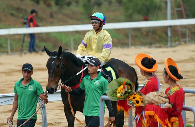 Chú ngựa thắng chặng được diễu hành qua khán đài