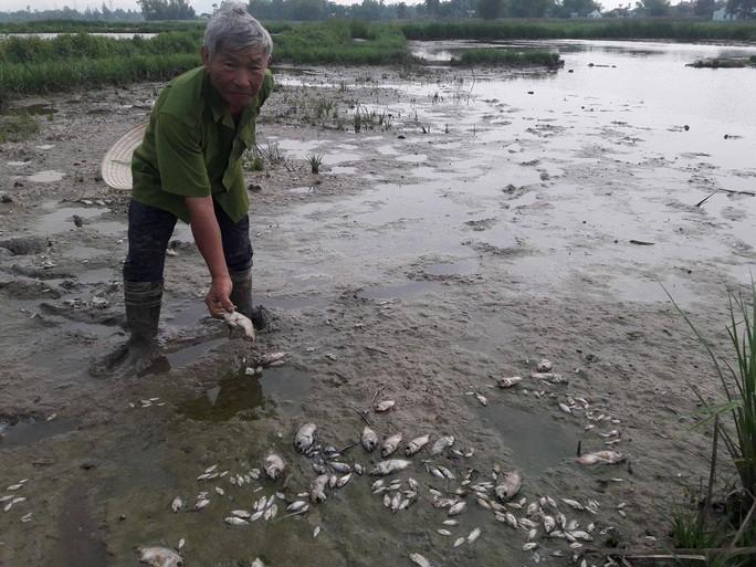 Người dân cho rằng nguyên nhân cá chết do nhà máy mạ kẽm gần đó xả nước thải trộm
