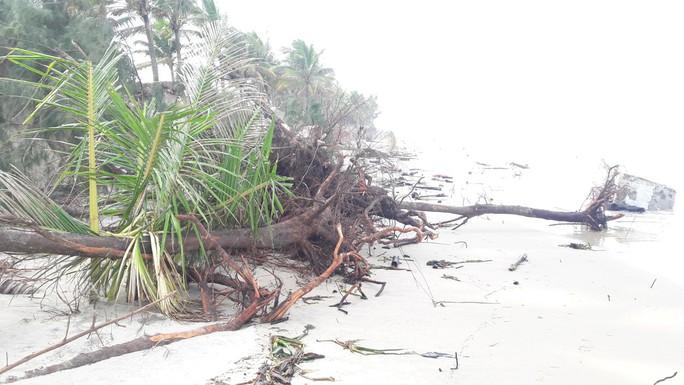 Chùm ảnh: Bờ biển Cửa Đại tan hoang hơn 2 km - Ảnh 8.