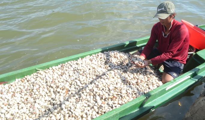 Vụ hải sản chết bất thường: Một số chỉ tiêu vượt ngưỡng cho phép - Ảnh 1.