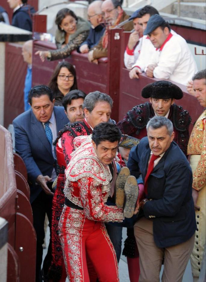 Tây Ban Nha: Đấu sĩ bò tót nguy kịch sau cú húc kinh hoàng