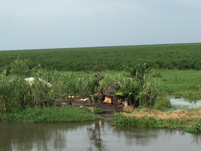 Những túp lều tukul dọc sông Nile Trắng, trên đất Nam Sudan