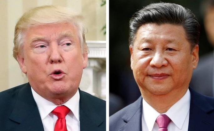 Ông Trump và ông Tập. Ảnh: AP